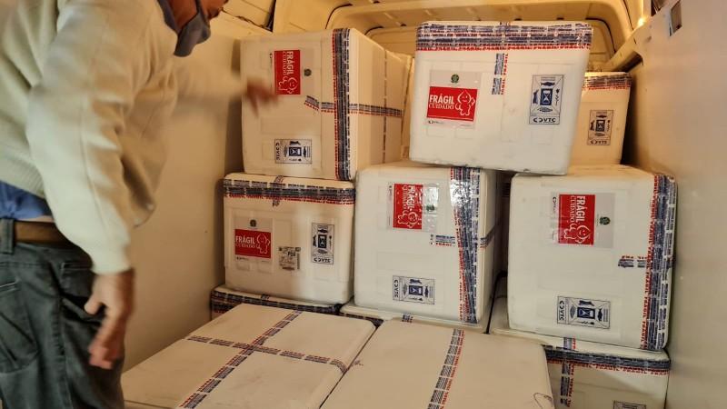 Remessas de Astrazeneca e Pfizer enviadas pelo Ministério da Saúde chegaram em dois voos no fim da tarde desta terça (20) - Foto: Itamar Aguiar / Palácio Piratini